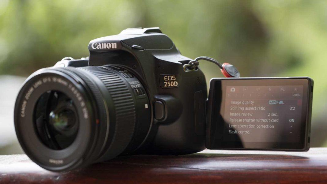 Canon_250D_ fotograf makinesi