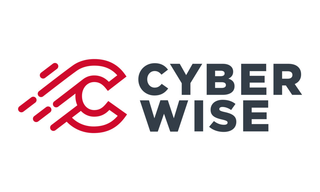 Cyberwise ile siber guvenlik aritmetigi