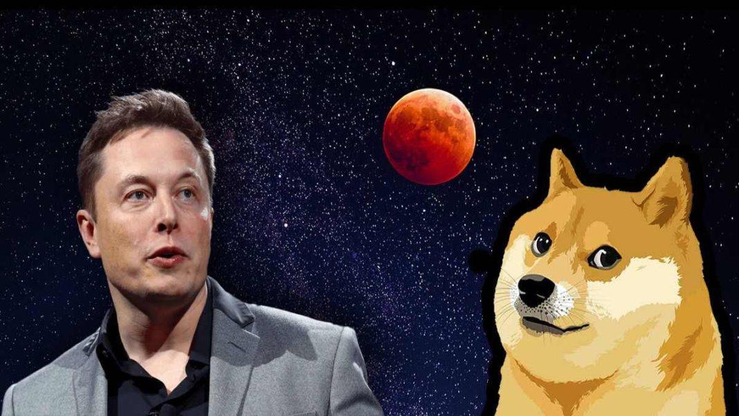 Elon Musk'ın Favorisi Olan Dogecoin, Değerini Bir Günde Üçe Katladı