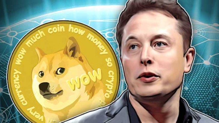 Elon Musk'ın Dogecoin'i Tekrar Ön Plana Çıkardığı Anket
