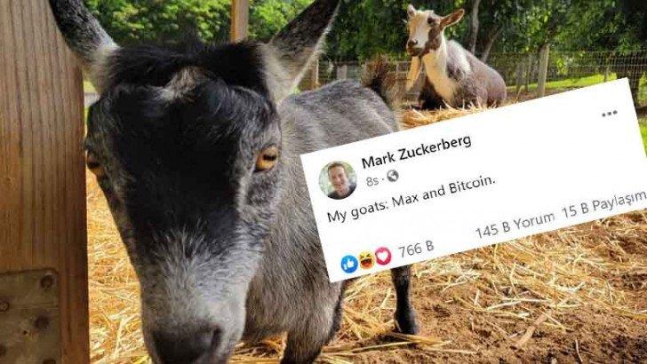Mark Zuckerberg, Keçilerinden Bir Tanesinin İsminin 'Bitcoin' Olduğunu Açıkladı